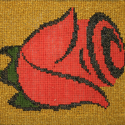 A rose from Seville_close_up